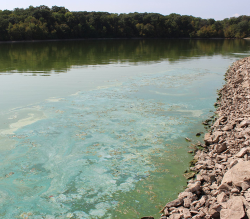 Big Creek Lake was one of several Iowa lakes were public advisories concerning algae blooms were issued in summer 2012.