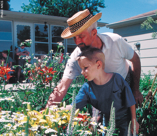 Grandfather and grandchild tend a gardent together.  Photo:  USDA-NRCS