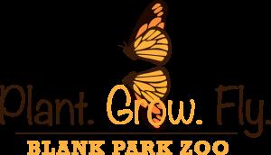 Plant_Grow_Fly